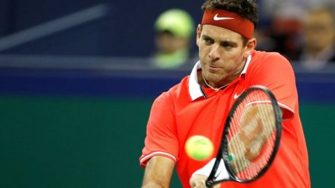 Juan Martin del Potro to miss Australian Open as he continues recovery